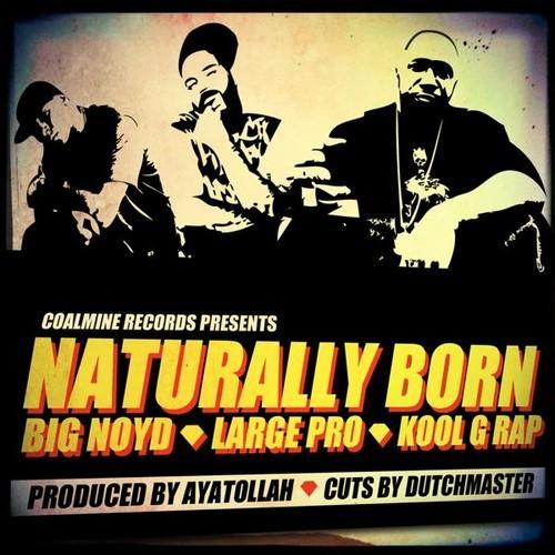 Big Noyd Large Pro Kool G Rap