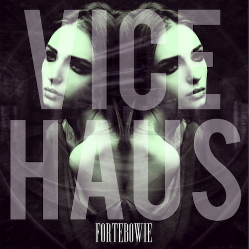 vice haus